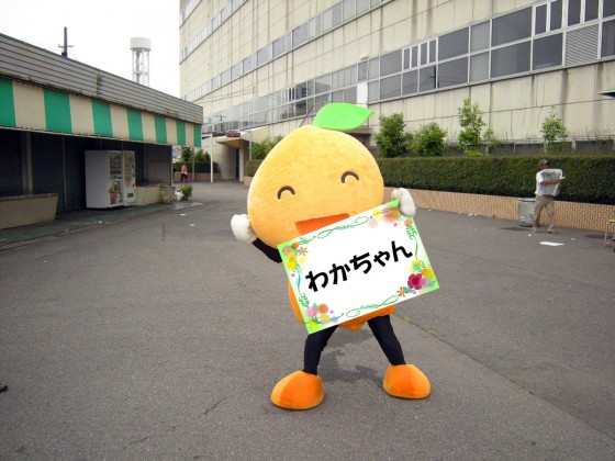 Image result for 和歌山競輪場 わかちゃん